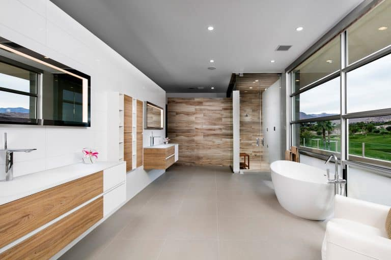 Modern Luxury Master Bathroom with a view