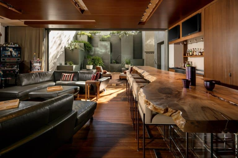 Modern Guest Living Room and Bar